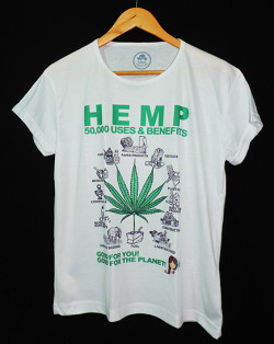 hemp_Bfem
